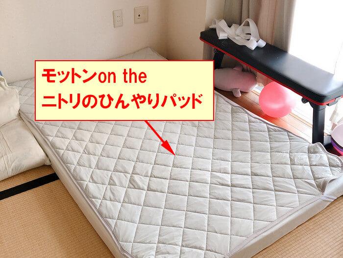 夏場はモットンの上にニトリのひんやりパッドを敷いて、小まめに洗濯するとカビ対策になります。