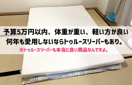 予算5万円以内、体重が重い、軽い方が良いなら「エアウィーブ」より「トゥルースリーパー」の方がどっちかと言えばオススメ。